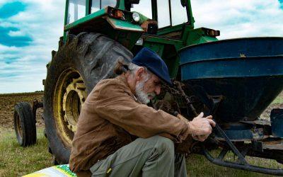 """Producción de harinas ecológicas en Montevideo se celebra con una nueva """"Fiesta de la Trilla"""""""